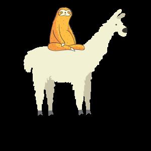 Niedliche Lama und Faultierfreunde Entzückende Tiere