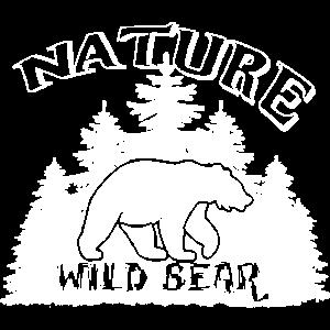 Nature Wild Bear