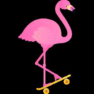 Tropical Flamingo On Skateboard