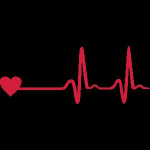 Herz und EKG, Herzschlag