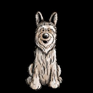 Happy Berger Picard - Hund - Dog