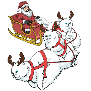 Perser Katze Weihnachten