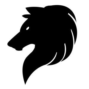 Empire's logo Hoodie