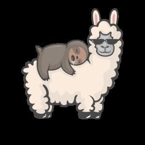 Süßes Faultier schläft auf einem flauschigen Lama