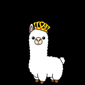 Queen of llamas