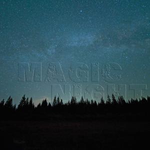 Nachthimmel Wald - MAGIC NIGHT