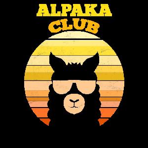 Alpaka Club Retro Alpaka Sonnebrille