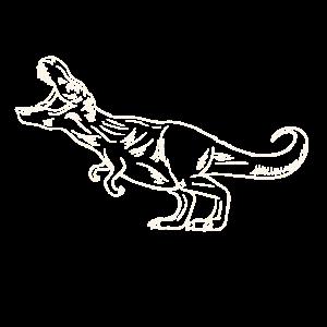 T-Rex - Dinosaurier - Dinosaurs