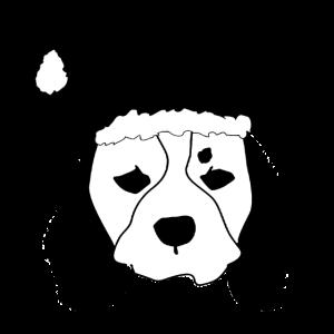 Hund mit Weihnachtsmütze Geschenk