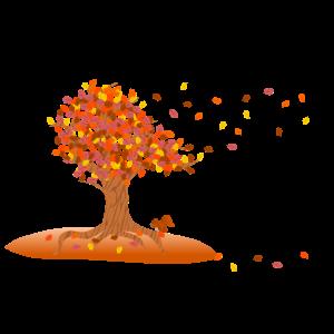 Herbstbaum der Jahreszeiten