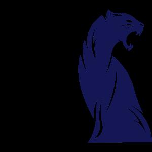 panther_01