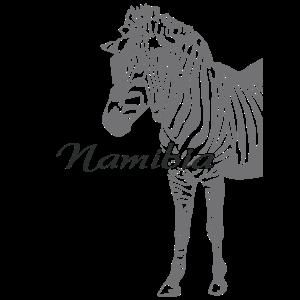 Namibia - Zebra