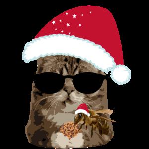 Weihnachten Katze cool mit Biene Keks