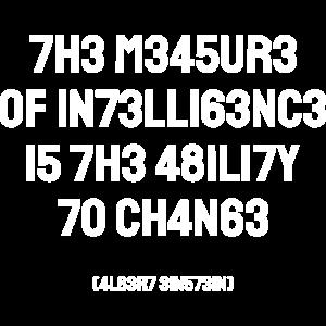 Intelligenz IQ Genie lustiger Spruch Einstein Bahn