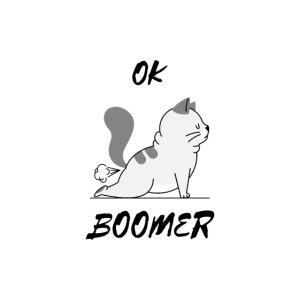 OK BOOMER mit süßer Katze.