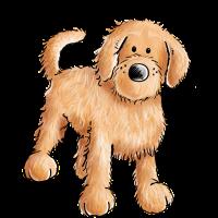 Süßer Doodle - Hybridhund - Goldendoodle - Lustig