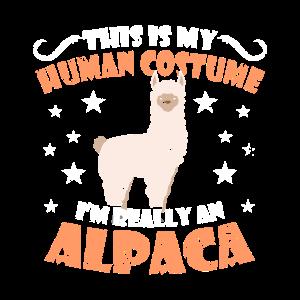 Alpaka Lama Kostüm Kinder Fasching Baby