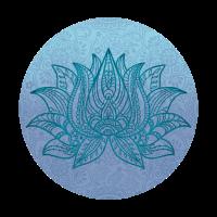 Lotus Blüte Yoga Meditation