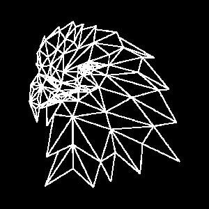 Geometrischer Adlerkopf