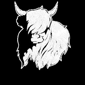Highland Cattle Schottisches Hochlandrind