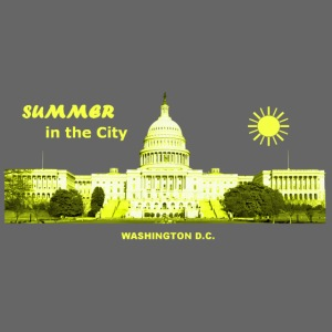 Summer City Washington D.C.