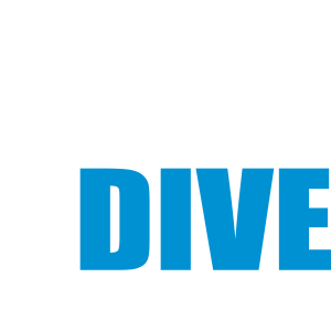 WORKDIVEBALANCE
