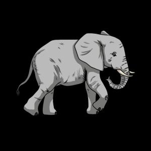 Elefanten Elefant Wildtiere Baby Zootiere Zoo