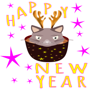 Cat Happy New Year FUNNY FUN