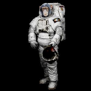 Affe Weltraum Astronaut
