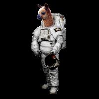 Alpaka Weltraum Astronaut