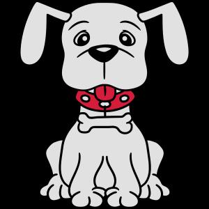hund welpe süß niedlich halsband knochen haustier
