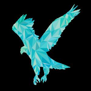 Adler Polygon