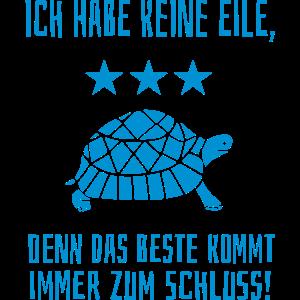 Beste zum Schluss Langsam Laufen Schildkröte