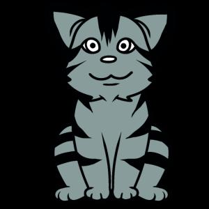 Katze Kätzchen Haustiere Katze