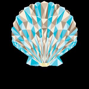 Polygon Venus Muschel Muschel Muschel