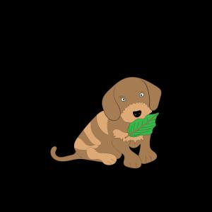 Persönlicher Stalker der Hund Geschenkidee Hunde