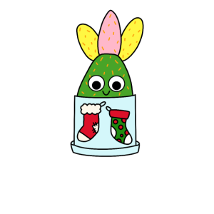 Christmas Cactus - Hybrid Cactus In Christmas