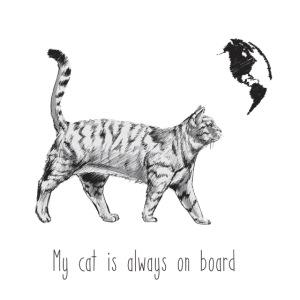 my cat is always on board