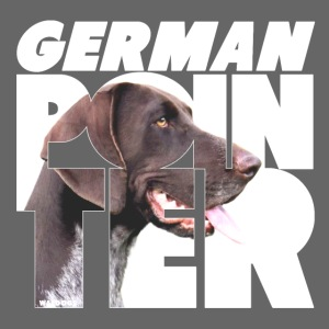 German Pointer VI