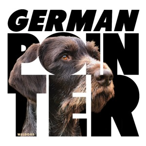 German Pointer IX