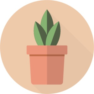 Flat 3 Leaf Potted Plant Motif