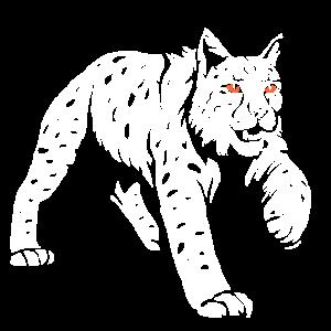 Luchs Wildkatze Lynx Tier Silhouette