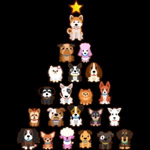 Weihnachten Hunde Welpen