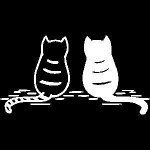sitzende Katzen