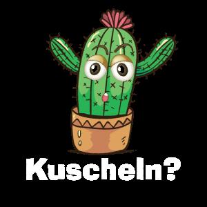 Kaktus Kuscheln Geschenk