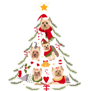 Yorkshire Terrier Weihnachtsbaum Hund Weihnachten