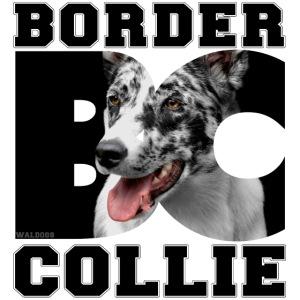 Border BC Collie III