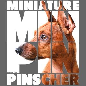 Minpin IV