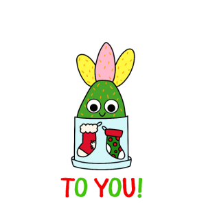 Merry Cactus To You - Hybrid Cactus In Christmas