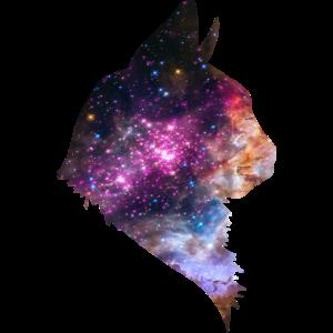 Space Cat Katze Weltraum